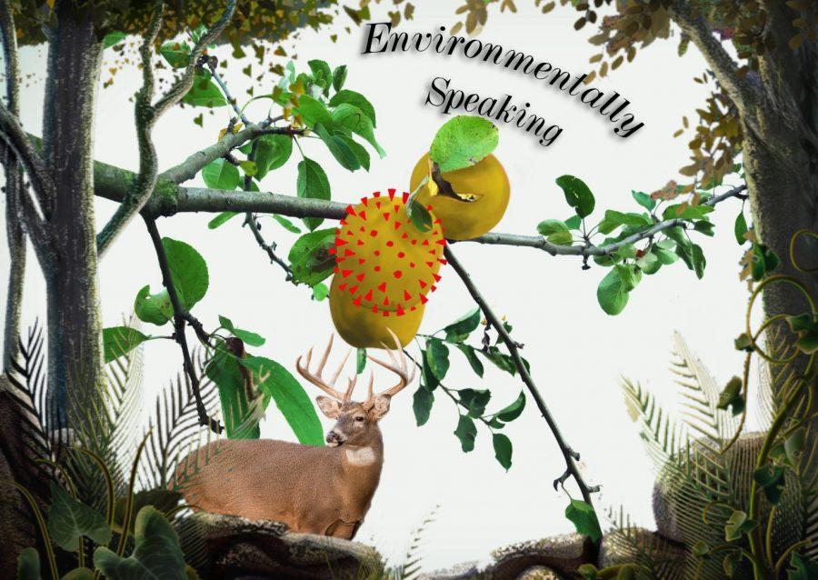 Environmentally Speaking...