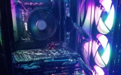 Junior Jaguar Innovates Away Boredom with PC