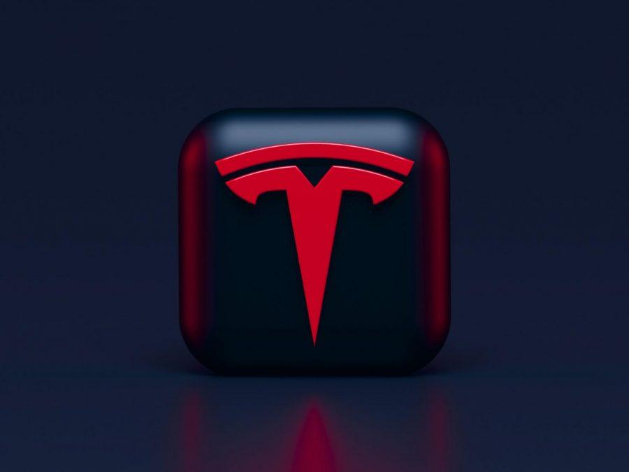 Elon Musk: Mad Genius or Just Genius?